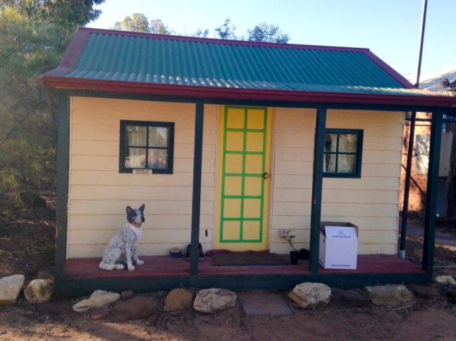 dog house berri backpackers