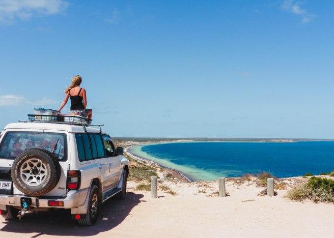 Shark Bay (3)