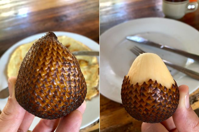 Snake fruit whynotabroad